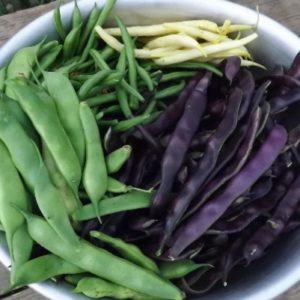 Суп с зеленой фасолью из армянского Аштарака